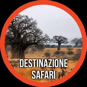 Destinazione safari in Tanzania