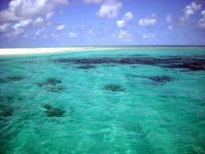 parco marino dell'isola di mafia
