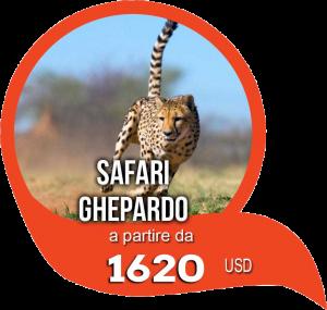 Itinerario Safari Ghepardo Tanzania
