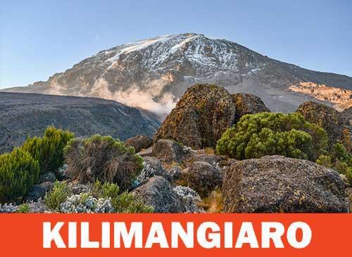 Parco Nazionale del Kilimangiaro