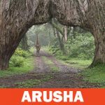 Parco Nazionale di Arusha