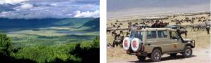 safari tour roma tanzania