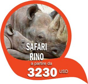 Safari Rino