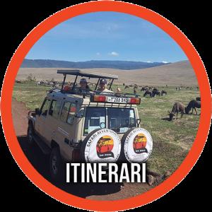 itinerari safari tanzania