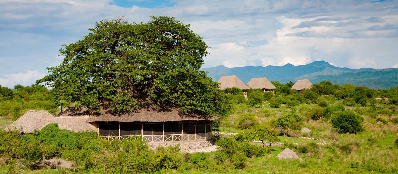 Tarangire Lodge