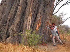 Exploring Tarangire Park