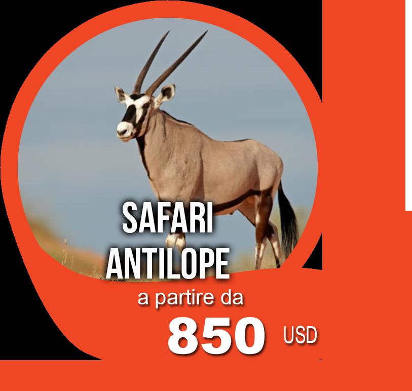 Safari Antilope