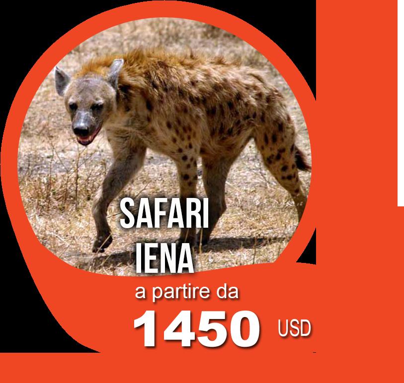 safari iena