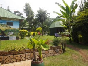 arusha lodge giardino