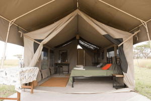 campo tendato parco del serengeti