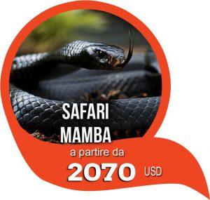 safari mamba tanzania