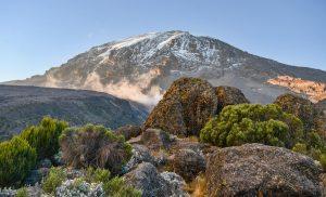 panorama kilimangiaro