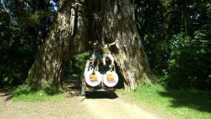safari avventura ad arusha
