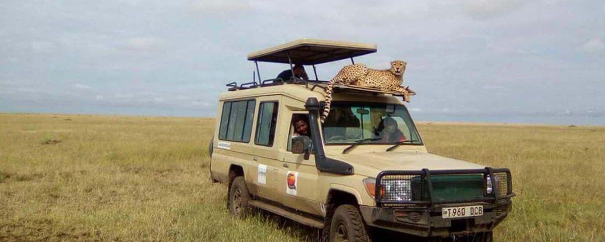 Viaggiare sicuri in Tanzania