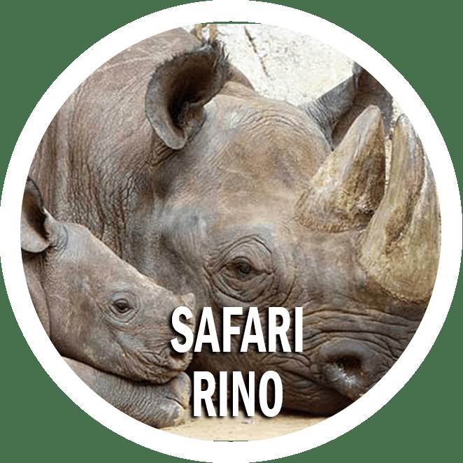 safari rino tanzania e mare zanzibar