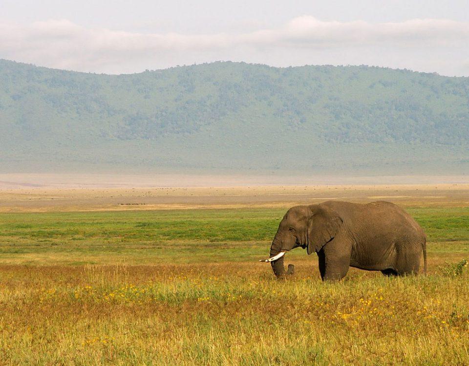 viaggio-in-Tanzania