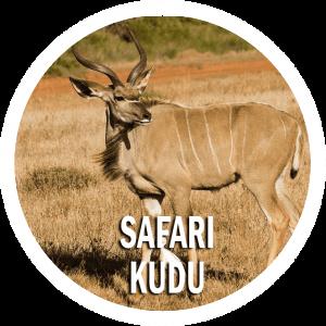 Safari Kudu Tanzania 11 giorni