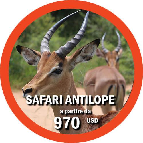 Safari Antilope - Itinerario di 4 giorni in Tanzania