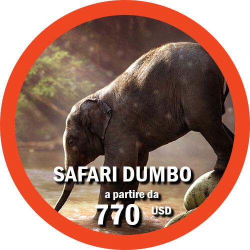 Safari Dumbo - Itinerario di 4 giorni in Tanzania