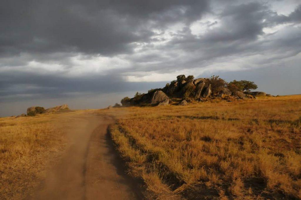 Safari Fotografico in Tanzania - Safari Tanzania