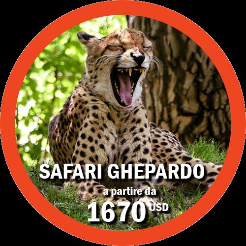 Safari Ghepardo - Tour di 7 giorni in Tanzania