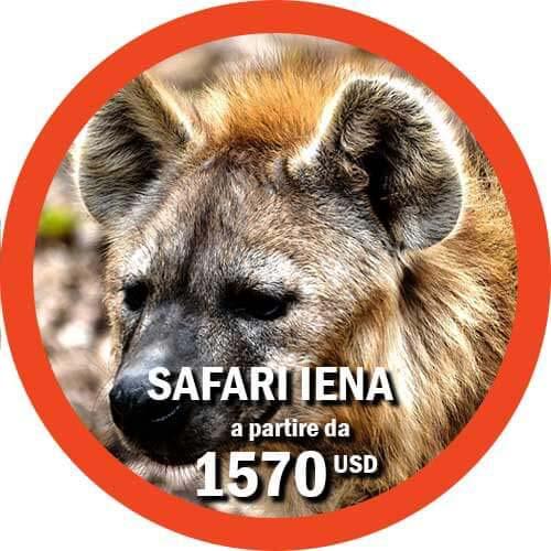 Safari Iena Itinerario di 6 giorni Viaggio Tanzania