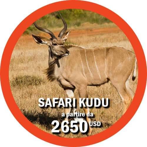 Safari Kudu - Viaggio Tanzania di 11 giorni