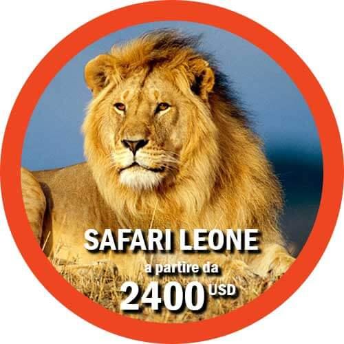 Safari Leone -Viaggio in Tanzania di 10 giorni