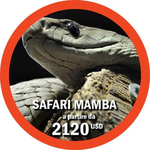 Safari Mamba - Tour in Tanzania di 9 giorni