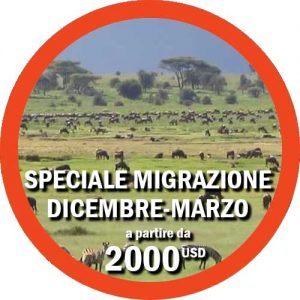 Speciale-Migrazione-Dicembre-Marzo-Viaggio-Tanzania
