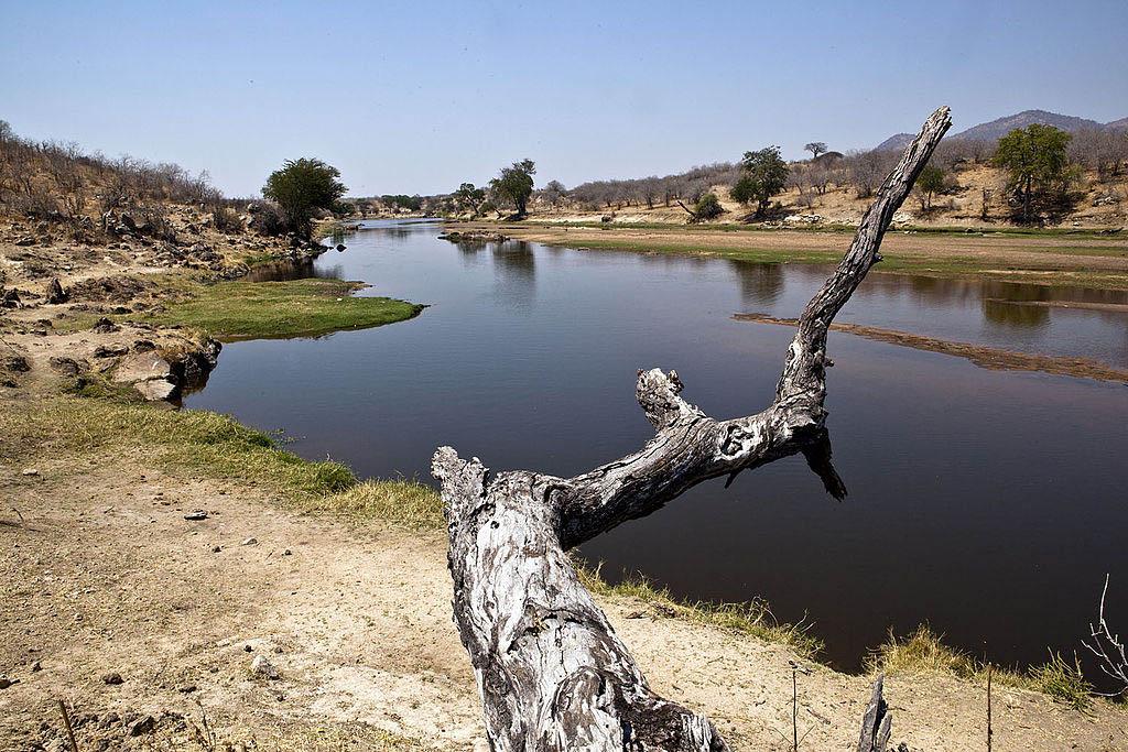 Parco Nazionale del Ruaha fiume