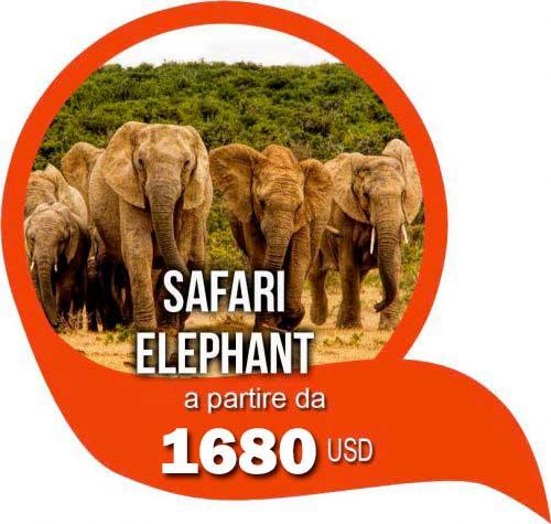 Safari Elephant - Offerte safari in Tanzania