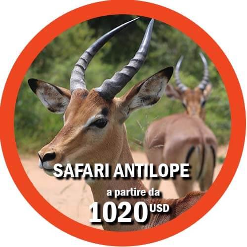 Itinerario Safari di 4 giorni in Tanzania