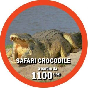 Safari Selous itinerario di 3 giorni