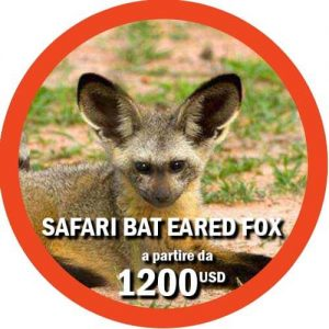 Safari Ruaha itinerario di 3 giorni