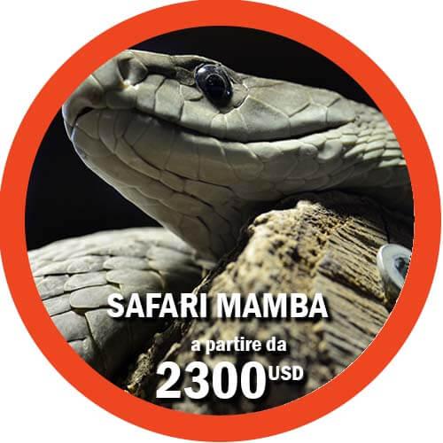 Safari in Tanzania di 9 giorni