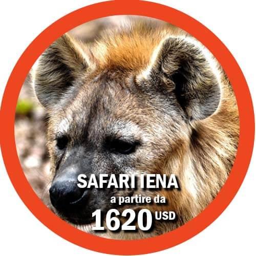 Safari in tanzania di 6 giorni