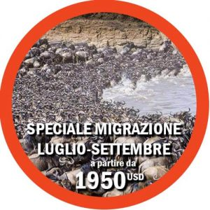 Speciale Migrazione Luglio-Settembre