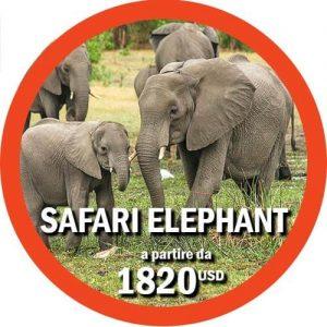 Itinerario Elephant