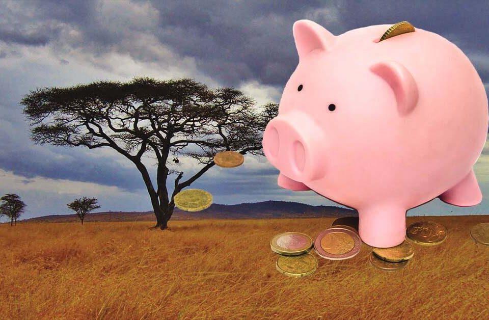 Tanzania safari prices