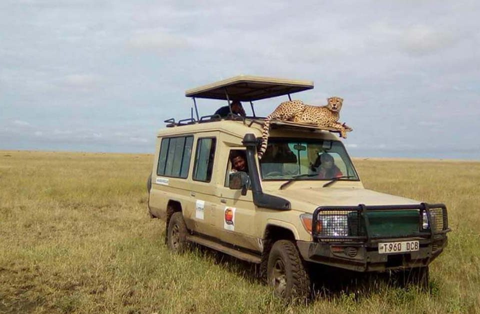 Tanzania safety