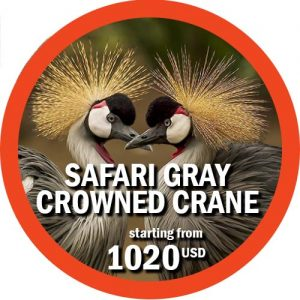 5 days safari in Tanzania Gray Crowned Crane