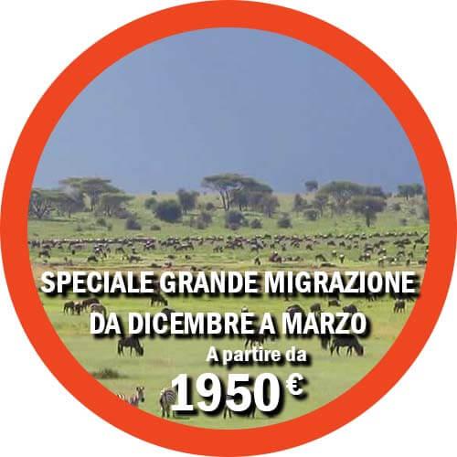 Grande Migrazione da Luglio a Settembre