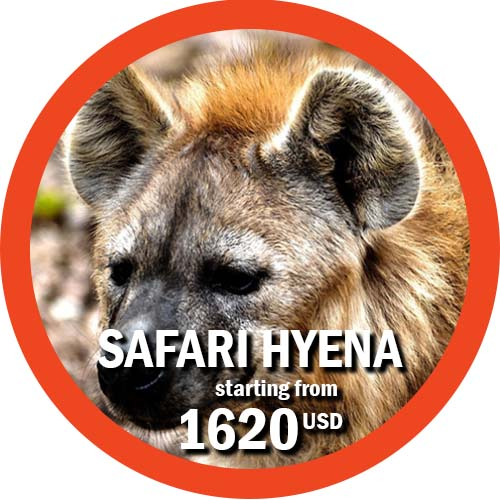 Hyena Safari 6 days Itinerary in Tanzania