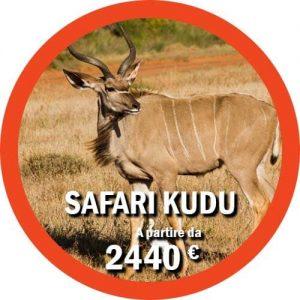 Tour safari di 11 giorni in Tanzania