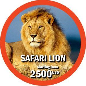 Lion Safari 10 days itinerary in Tanzania