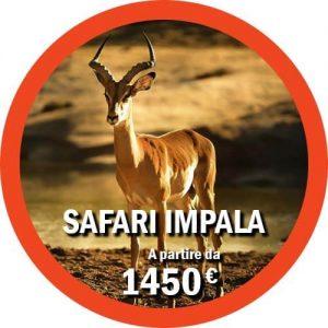 Safari Impala