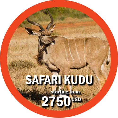 Safari Kudu 11 days itinerary in Tanzania