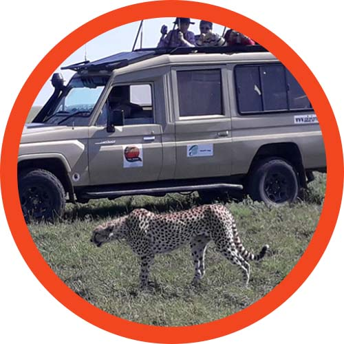 Safari Tanzania offers