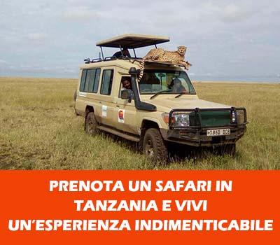 Prenota un safari in Tanzania
